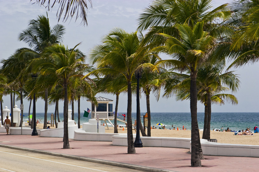going green in fort lauderdale