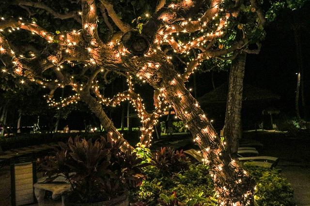 festival of lights in fort lauderdale