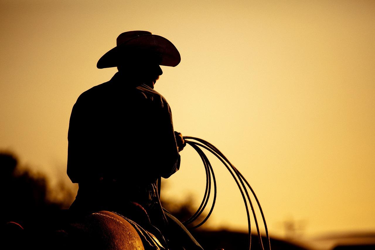 horseback riding in davie